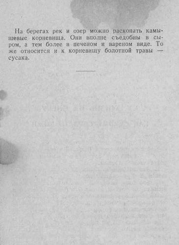 Спутник партизана, 1942 год. B776a28e1b